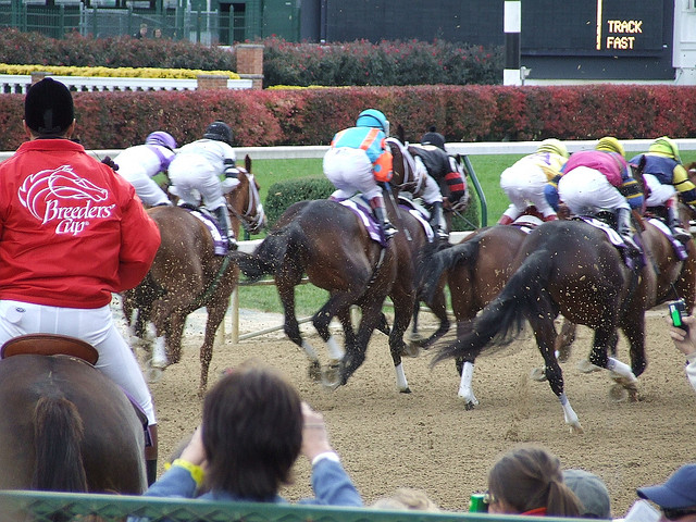 All Day Racing Breeders Cup Classic Contenders